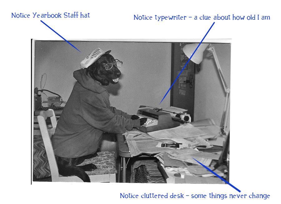 Black lab at typewriter