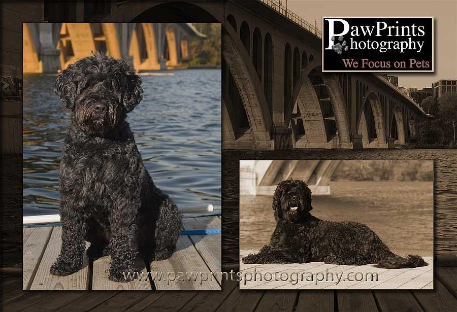 Max at the Key Bridge