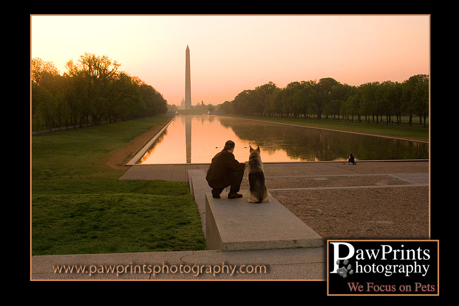 Rocky and his owner watching the sunrise over the Washington Monument.