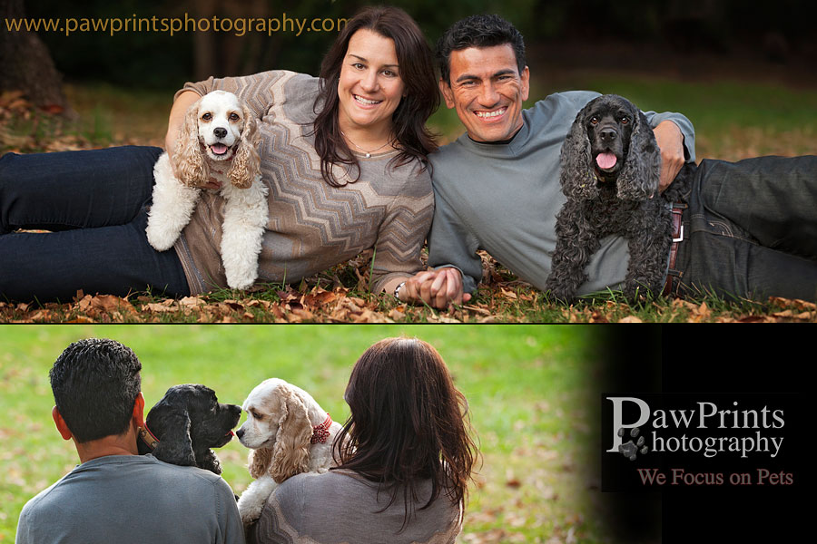 dasher_millie_family_2